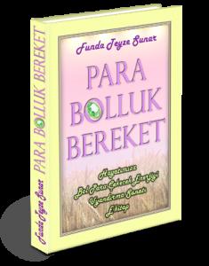 Para-bolluk-bereket---standing