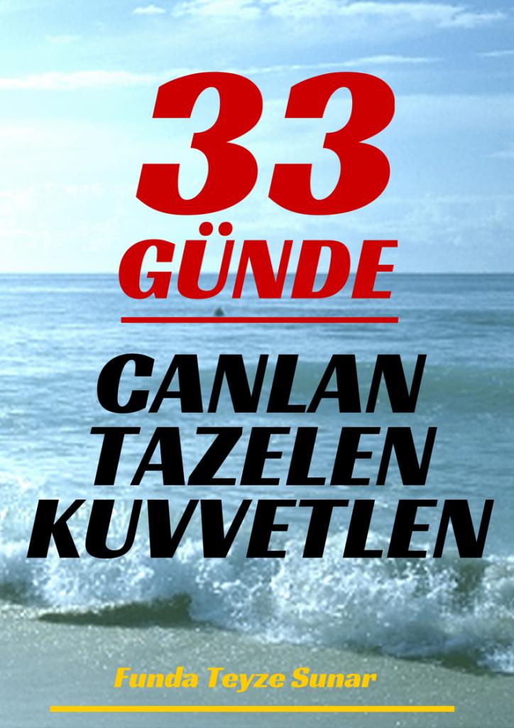 33GUN-2